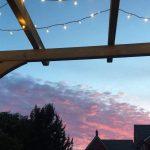 Callum's Summer Low Maintenance Garden Transformation