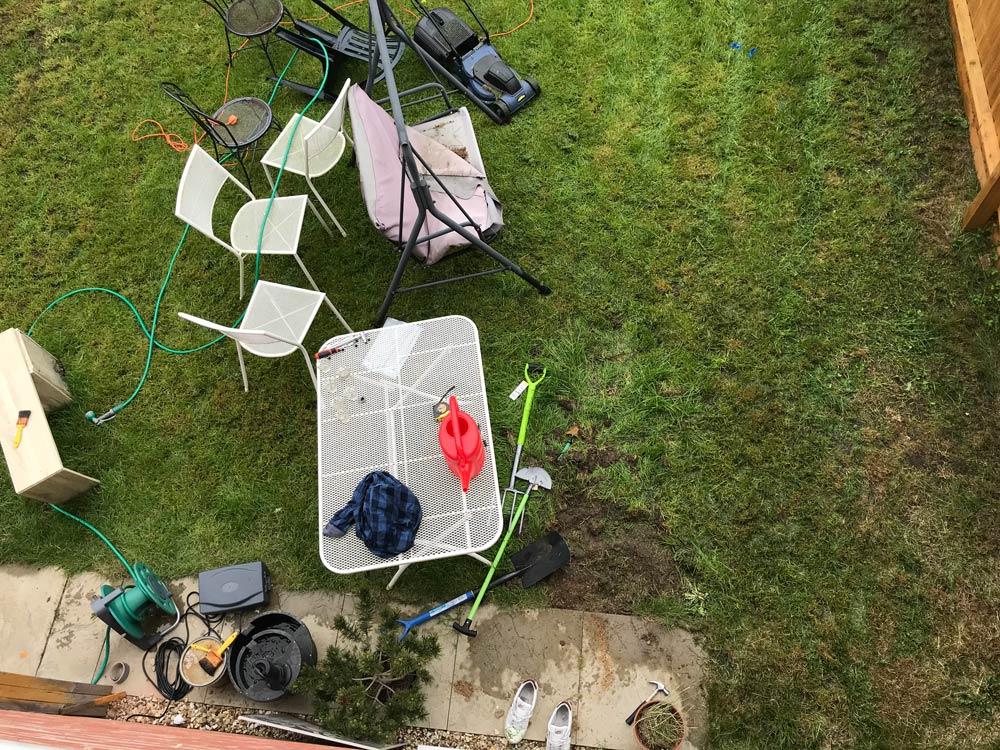 garden project grass